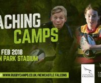 Falcons rugby coaching