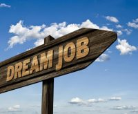 Are you looking for your dream job?