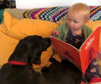 Story time for your four-legged friends!!